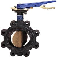 Butterfly Valve - Cast Iron, 200 PSI, EPDM Seat